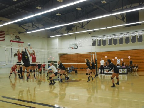 Rio Hondo Women's Volleyball team hope to continue its winning streak