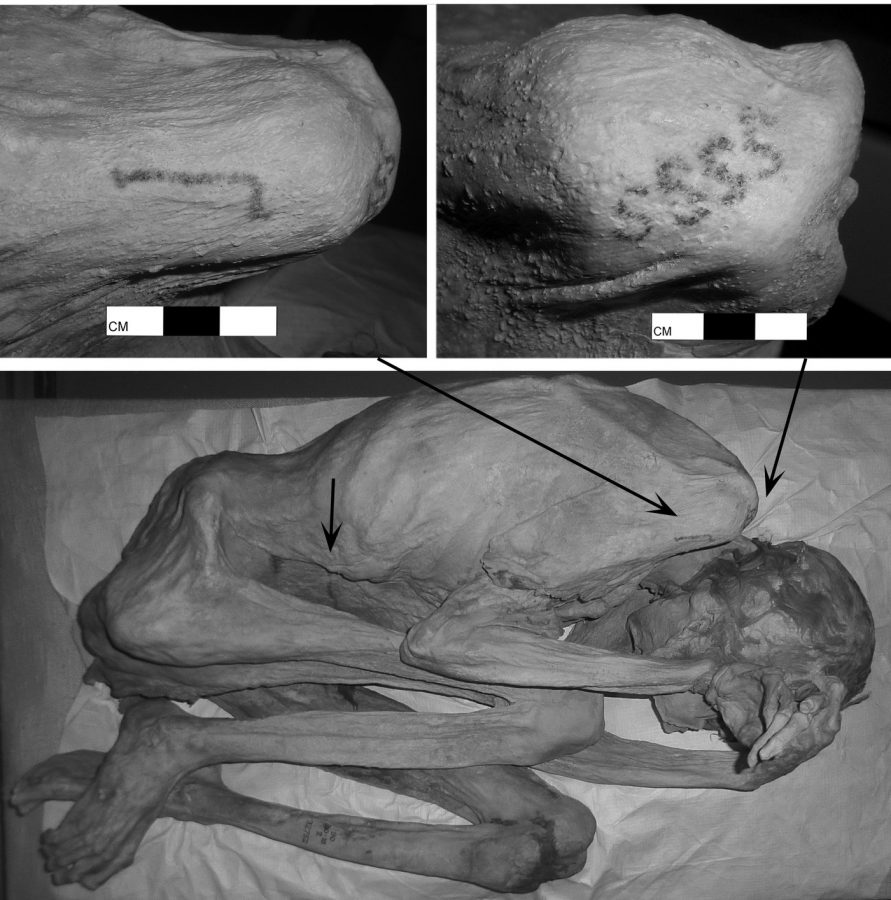 Researchers find oldest tattoos on egyptian mummies el for Egyptian mummy tattoos