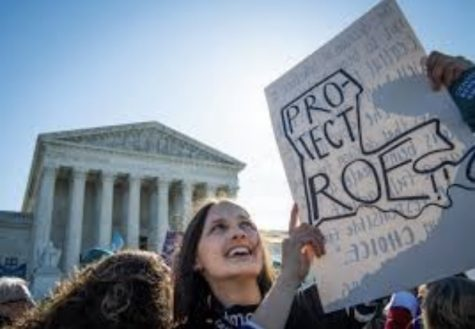 """A woman holding a """"Protect Roe"""" sign inside a shape of the state of Louisiana in front of the supreme court."""