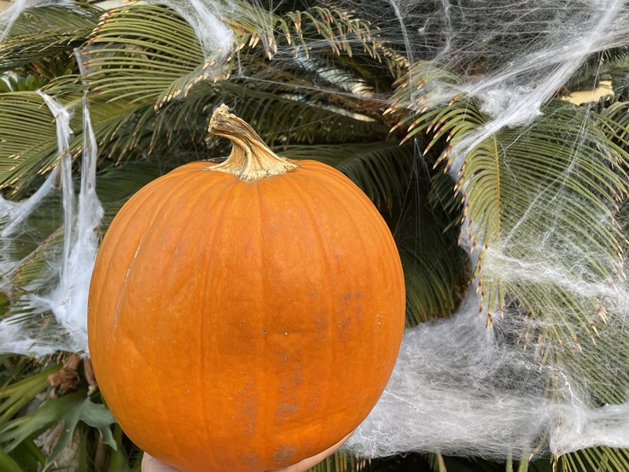 A pumpkin and cobwebs signifying the start of the Halloween spooky season.